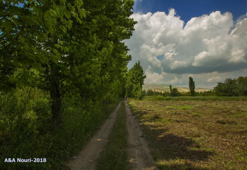 Road to Barandouz