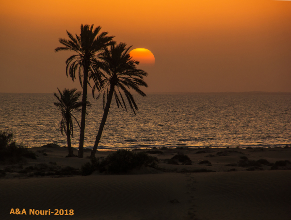 sunset , desert and the sea