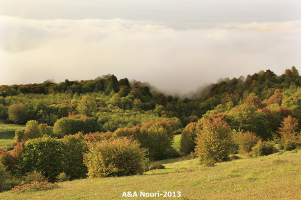 when clouds hug Autumn