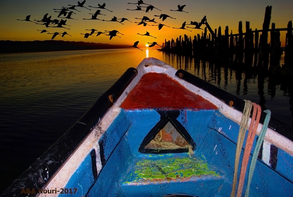 Boating to dreams