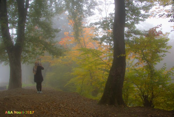 Hi grand season,Autumn