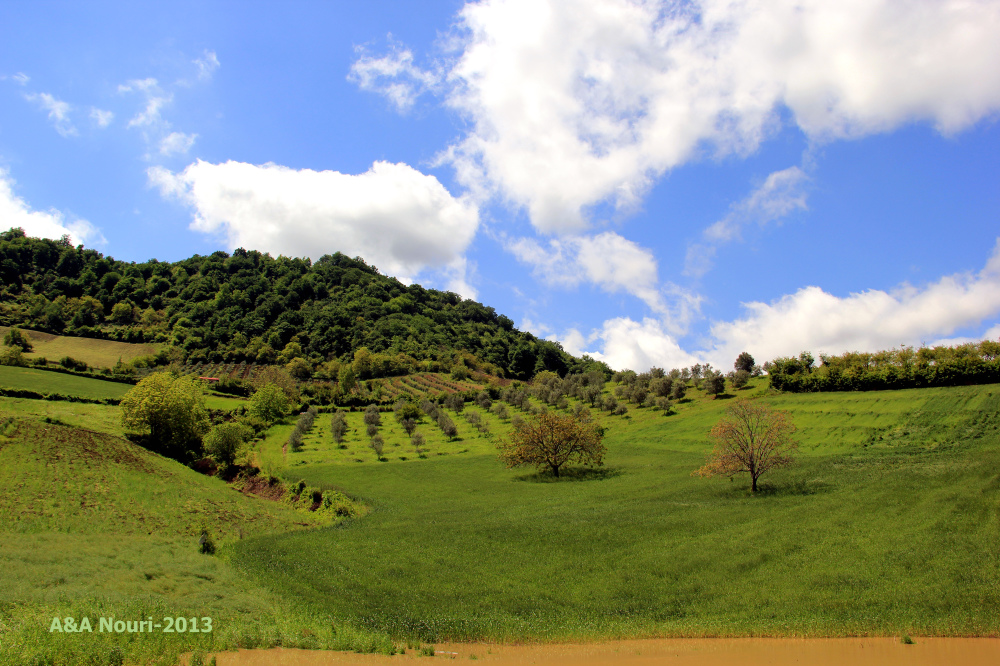 nature of Golestan- Iran