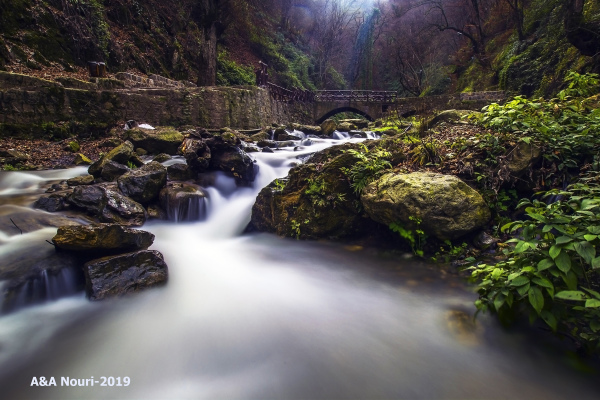 stream of dream