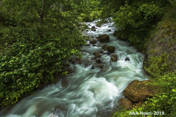 stream of beauty