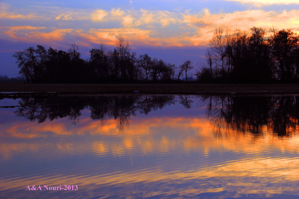 twilight reflection