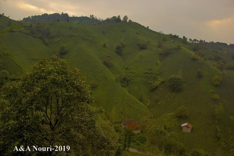 green slopes