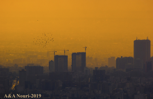 flight over the dusty city