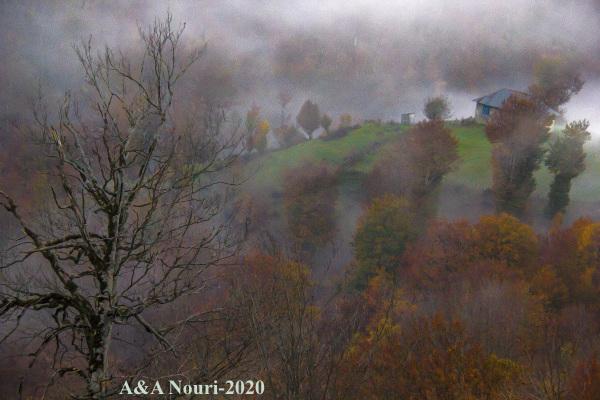 alone in mist
