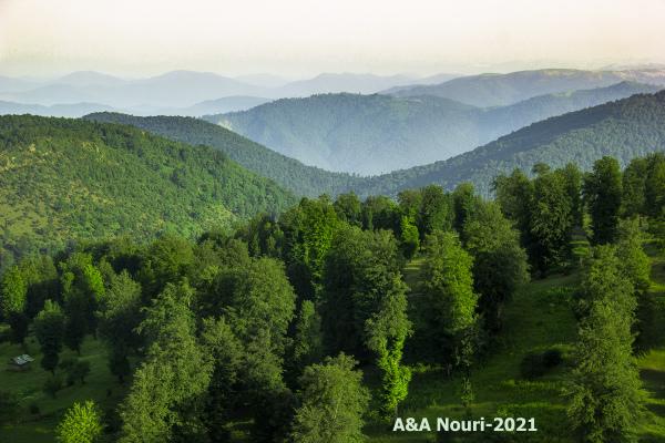 green altitude