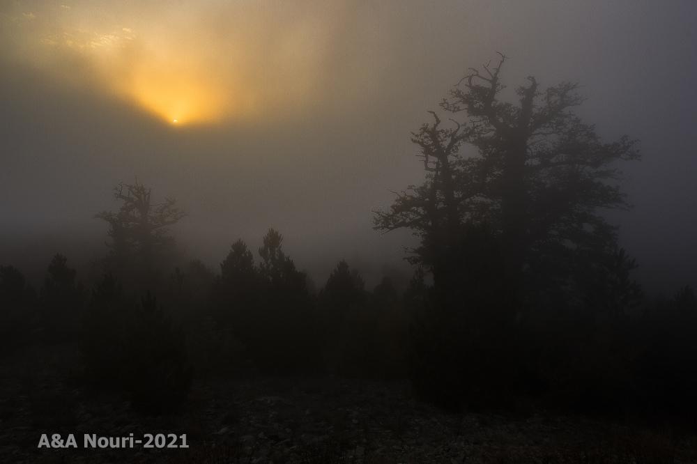 misty sundown