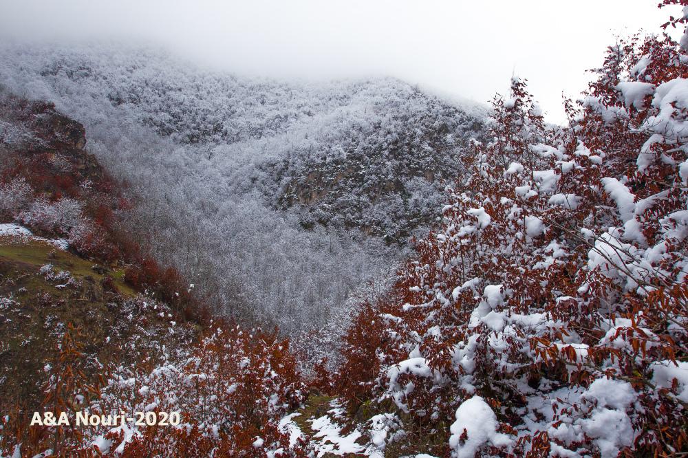 first autumn snow