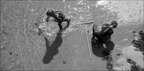 children shrimp fishing on mull