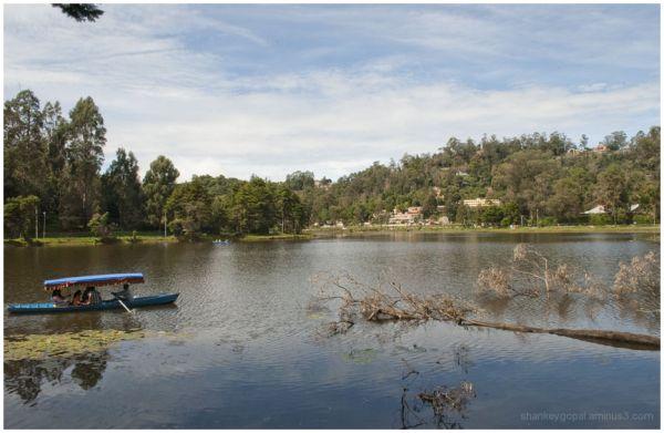 Kodai lake 2