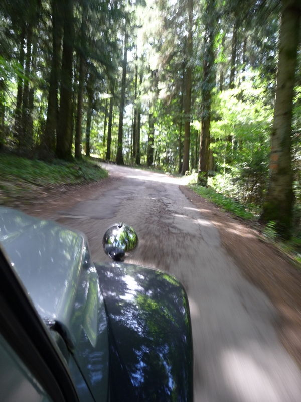 2cv in the forest