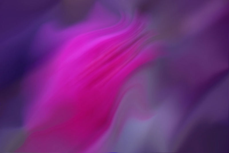 flower abstraction