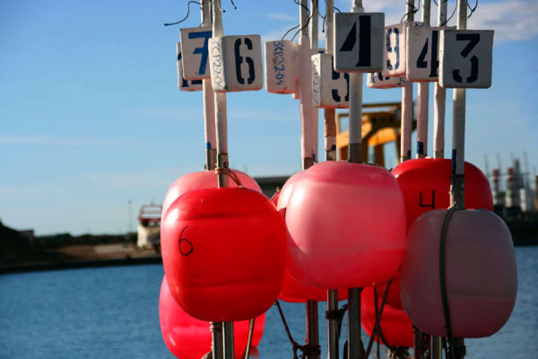 red numbered floats