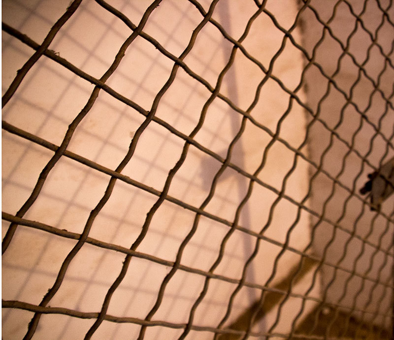 rusty shadow netting