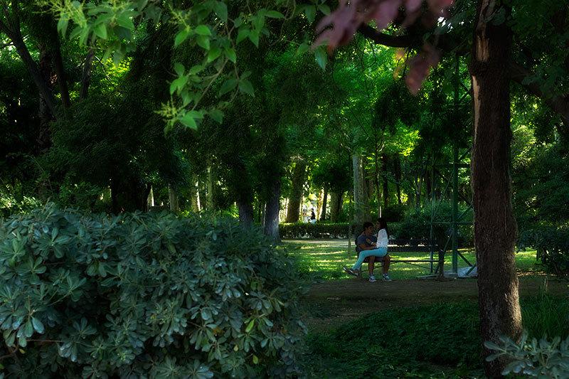 love at parque de maria luisa seville