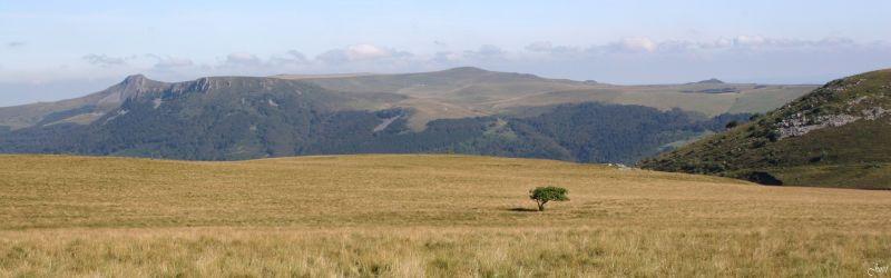 Auvergne (2)