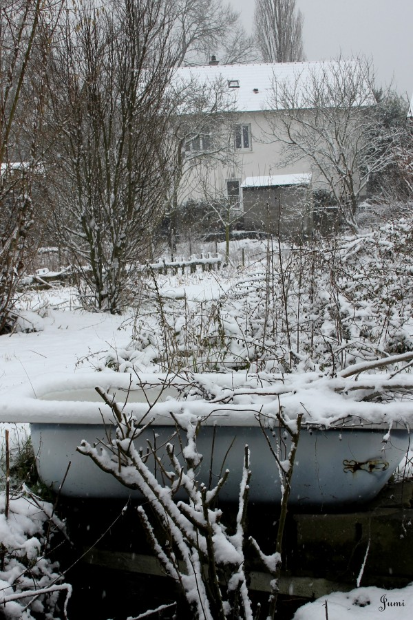 Episode neigeux (3)