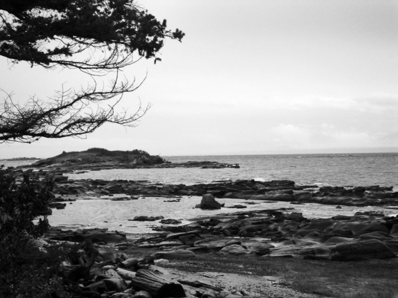 hornby island, bc, coast line, west, beach, b&w