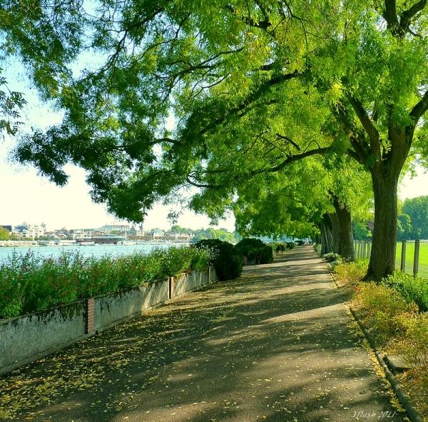 Voulez-vous marcher ?  ;-))