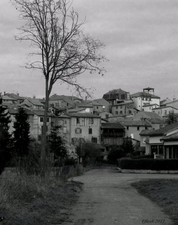 Maringue