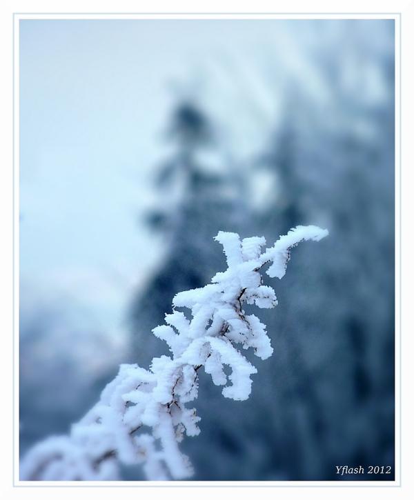Décor de neige