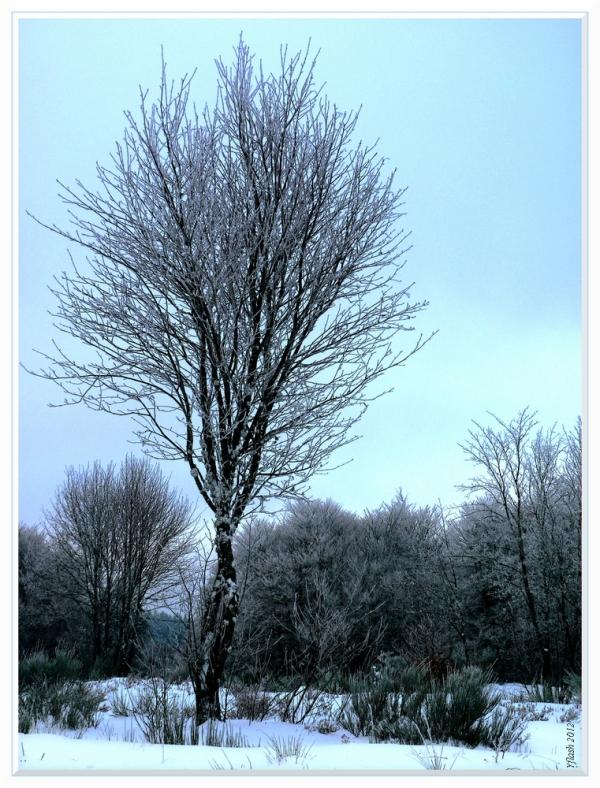 """Le """"Blues"""" de la neige"""