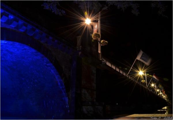 L'arche bleu