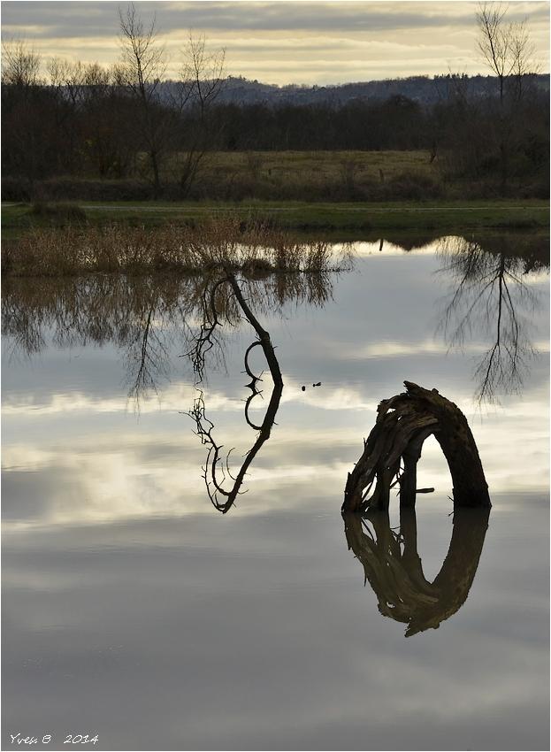 Thématique du reflet