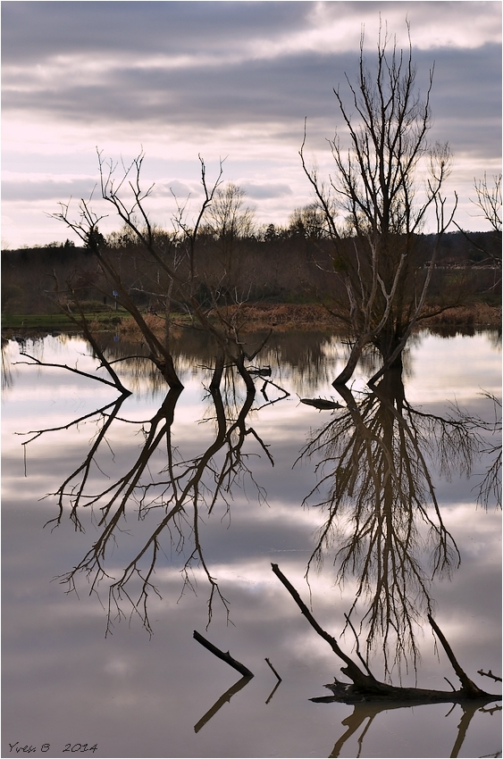 Thématique du reflet # 2