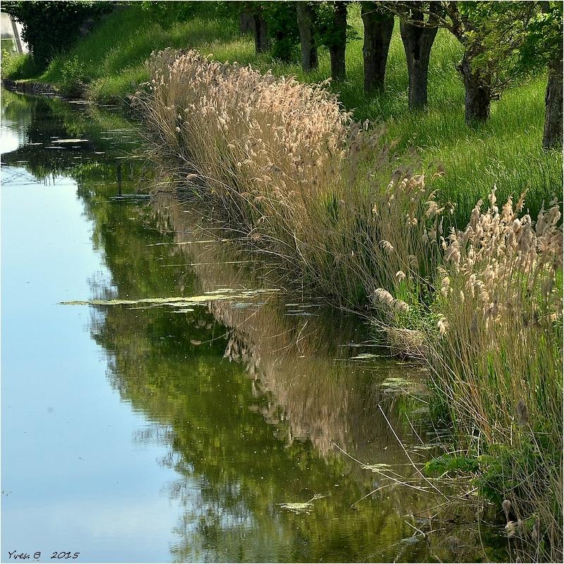 Le reflet du canal (Briare)