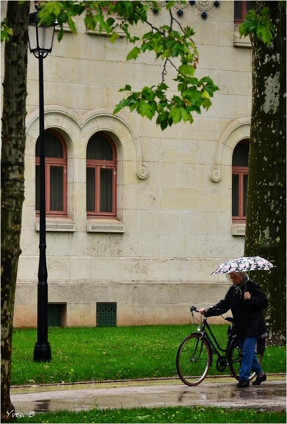 Le vélo et le parapluie