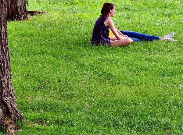 Une journée sur l'herbe