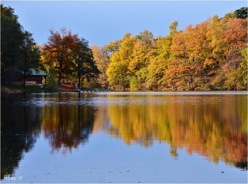 Reflet d'automne #2