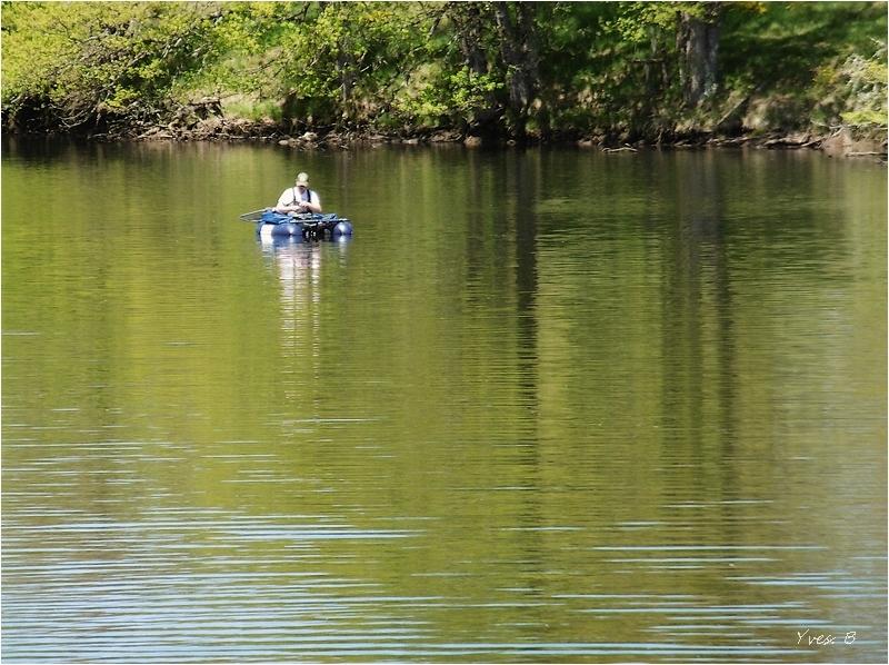 Ligne de flotaison