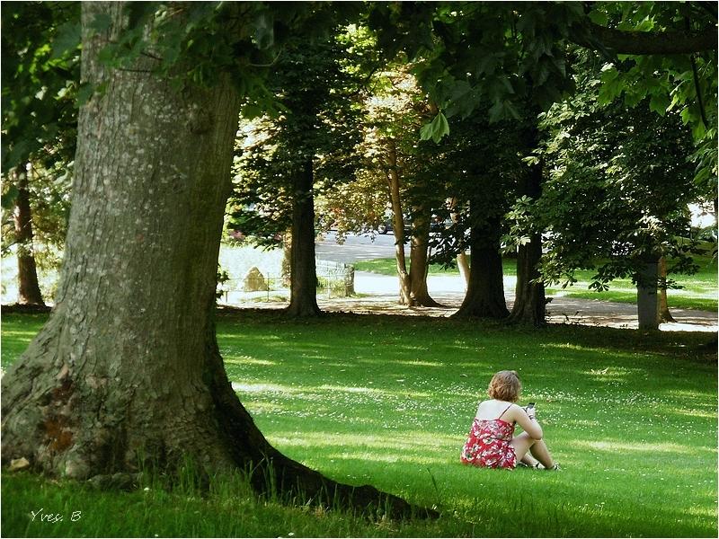 Au près de son arbre