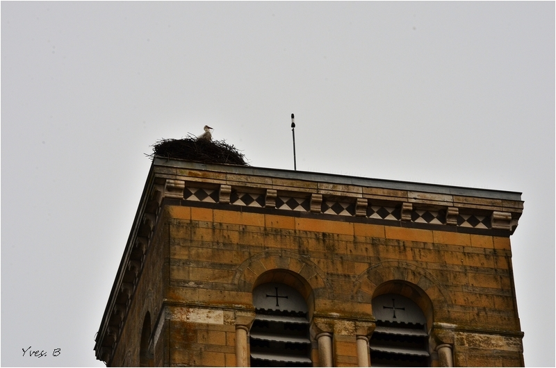 Le clocher et la cigogne - bis -