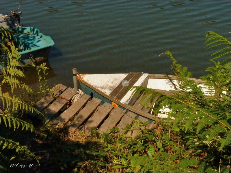 Le vieux ponton