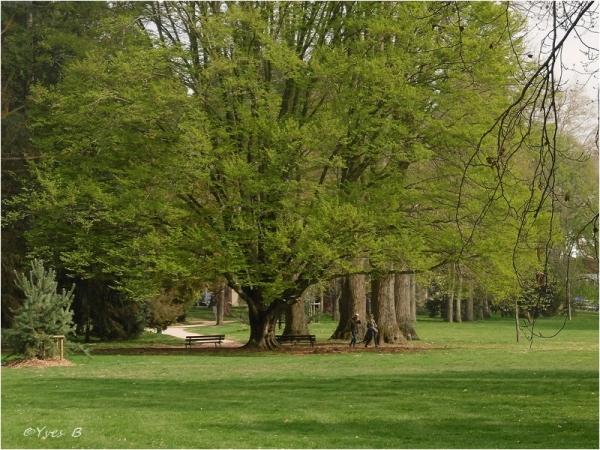 Les parcs # 2