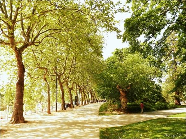 Les parcs