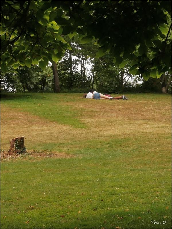 Allongée dans l'herbe