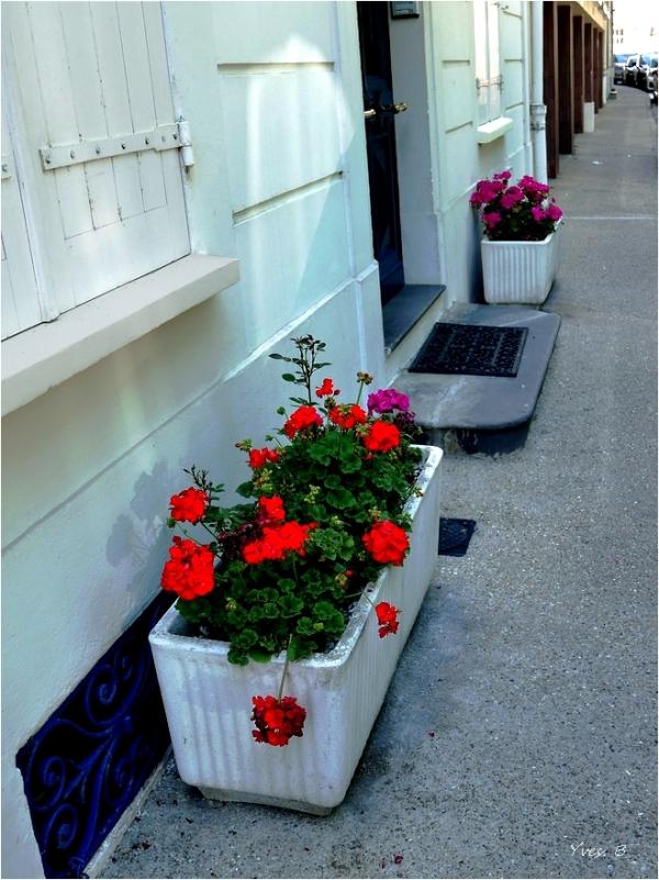 Avoir son petit jardin