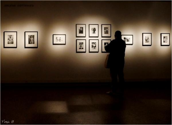 A la lumière de l'expo