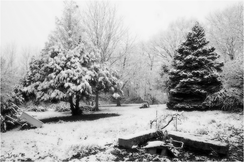 L'hiver le retour