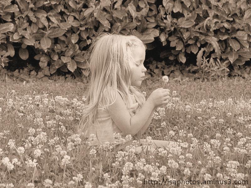 La fleur magique ...
