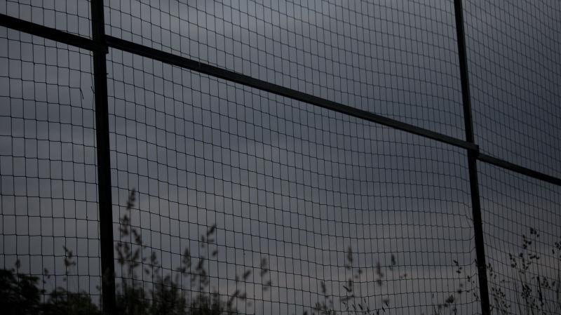 wire mesh fence II