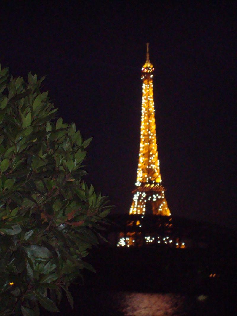 C'est pourquoi j'adore Paris