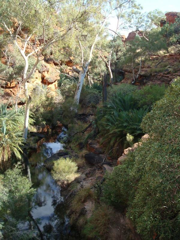 Kings Canyon - 5/9 - the Garden of Eden